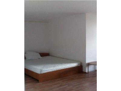 Apartament 1 camera, 45 mp, Marasti